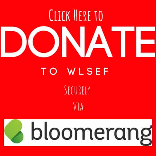 WLSEF Donate